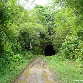 History of the Rio Claro Railway