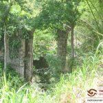 Tobago Providence Aqueduct
