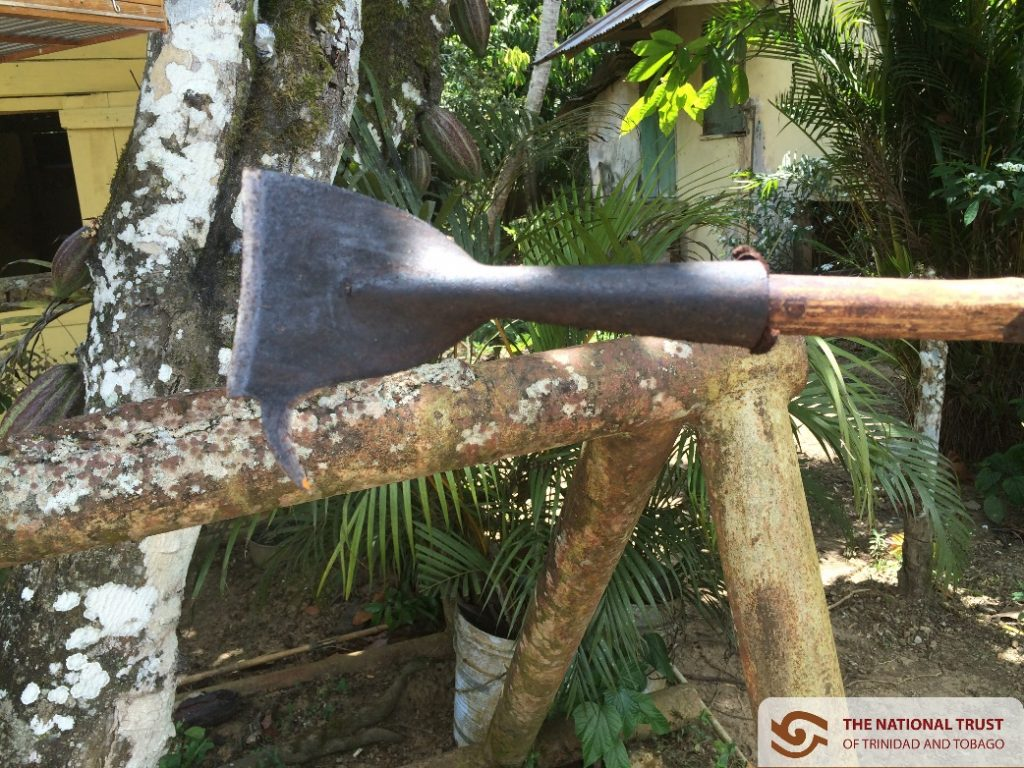 A Cocoa Knife – Tool used to cut the cocoa off of the branc