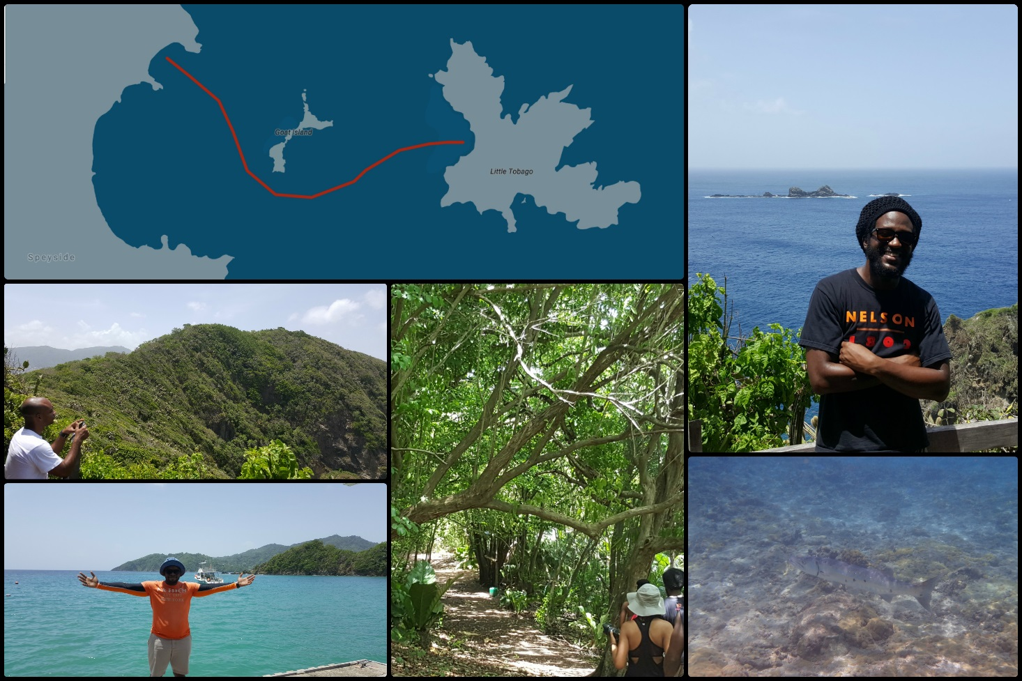 five-big-things-about-little-tobago-adventure