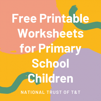 Free Printable Worksheets for Primary School Children